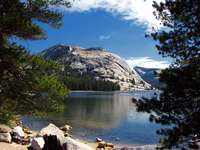Park Narodowy Yosemite (USA)