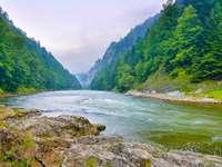 Rzeka Dunajec w Pieninach (Polska)