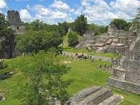 Wielki Plac w Tikal (Gwatemala)