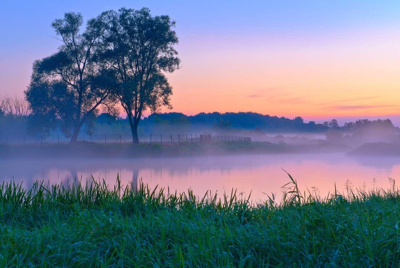 Mazowiecki krajobraz z Narwią (Polska)