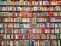 Regały z książkami