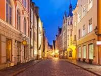 Ulica w centrum Tallina (Estonia)