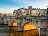 Most Pont Neuf w Paryżu (Francja)