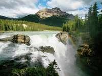 Wodospad Athabasca (Kanada)