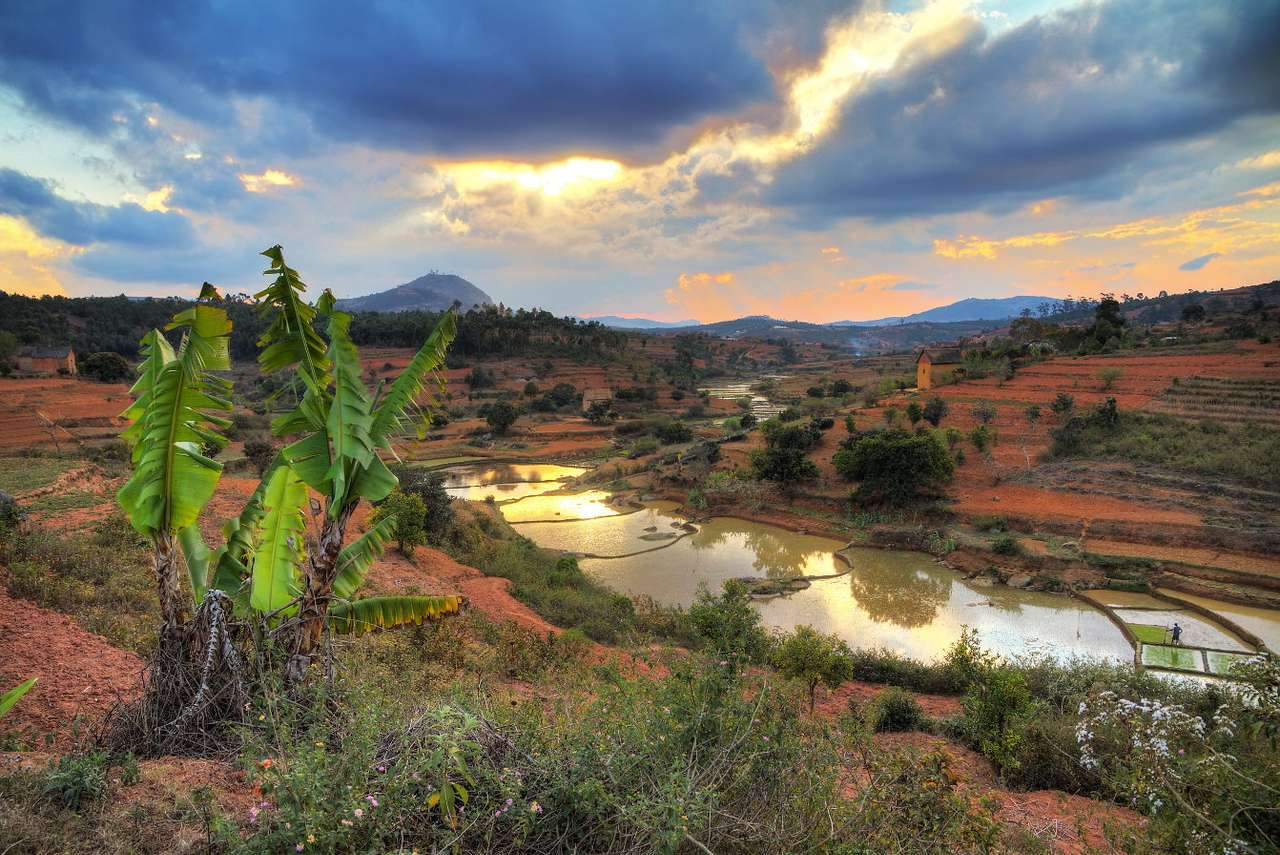 Wyjątkowy krajobraz (Madagaskar) - Madagaskar to państwo położone na wyspie na Oceanie Indyjskim, które urzeka niezwykłym klimatem oraz różnorodnością świata roślin i zwierząt, wśród których znajdują się gatunki endemi (11×8)
