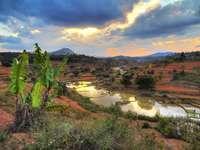 Wyjątkowy krajobraz (Madagaskar)