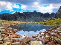 Staw w Tatrach Wysokich (Słowacja)