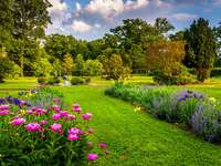 Kolorowe kwiaty w parku Druid Hill w Baltimore (USA)