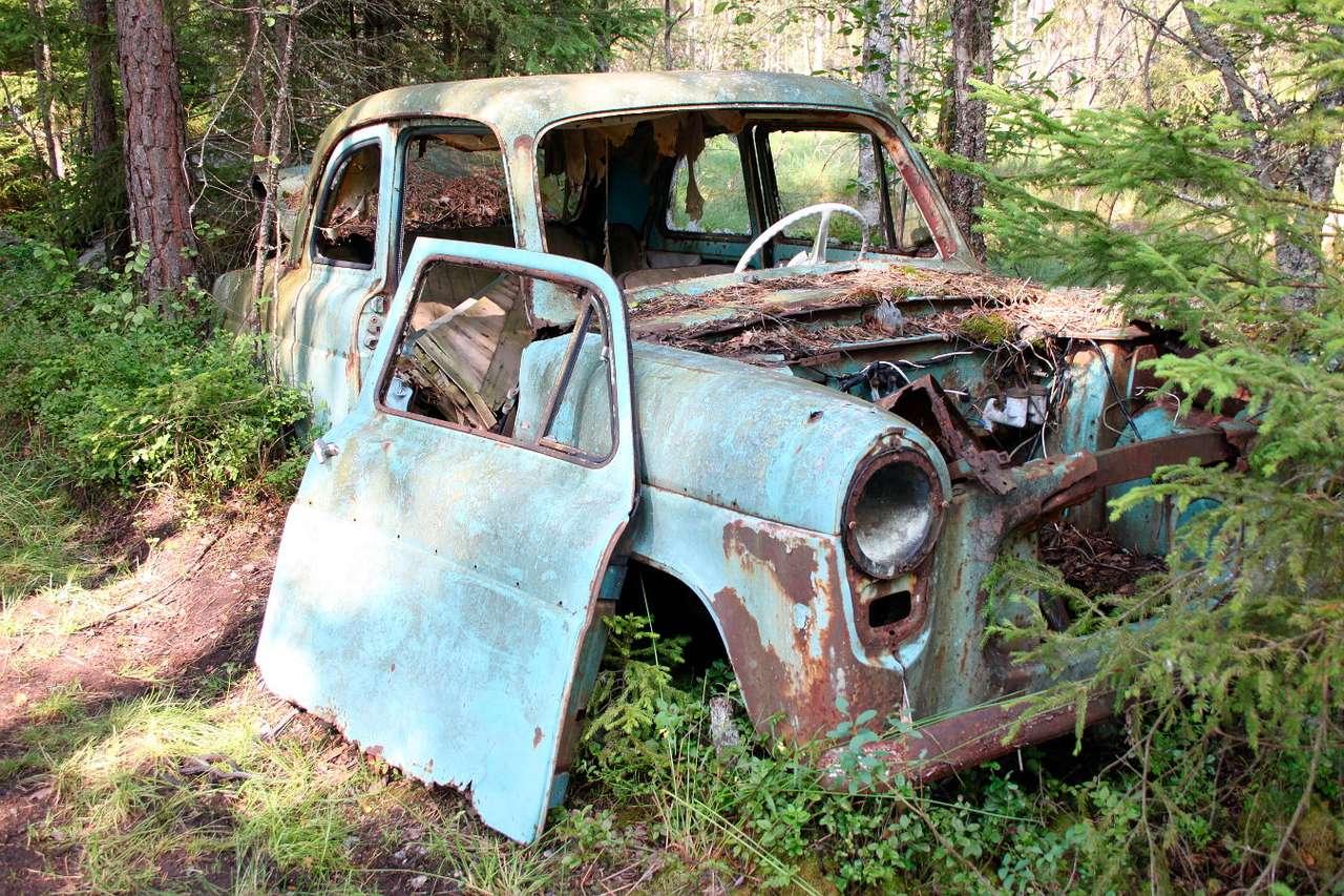 Wrak samochodu w Kyrkö Mosse (Szwecja) - Szwedzkie cmentarzysko samochodów, stanowiące niezwykłą atrakcję turystyczną, leży nieopodal miasteczka Ryd. Ten podmokły teren należał do Ake Danielssona, który zajmował się wydobywaniem (15×10)