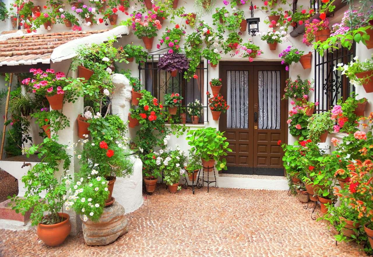 Kwiaty w doniczkach - Bujne, kolorowe kwiaty w tradycyjnych glinianych donicach lub metalowych kwietnikach to popularna ozdoba kamienic i domów jednorodzinnych w krajach śródziemnomorskich. Soczystoczerwone, różowe i (12×9)