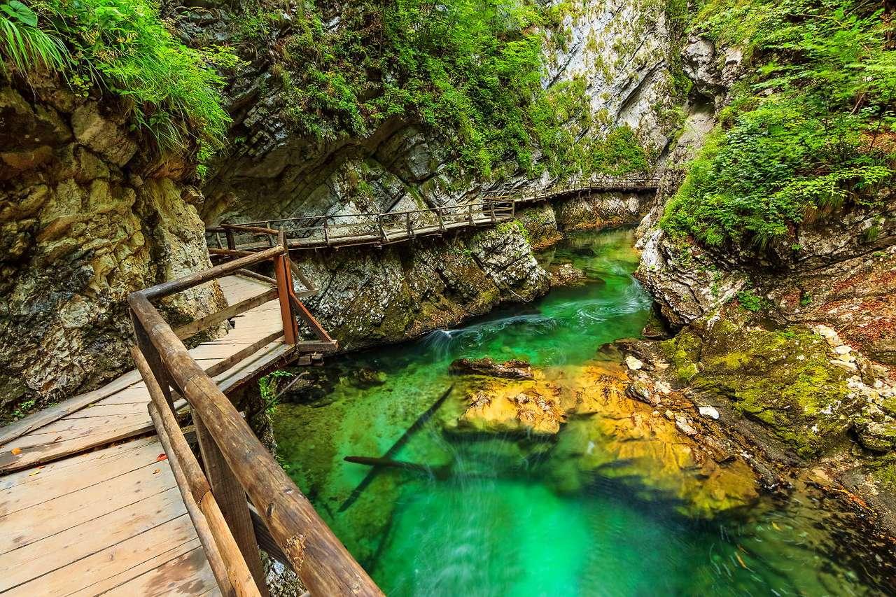 Drewniana kładka nad wąwozem Vintgar (Słowenia)