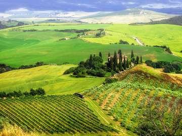 Łąki i pola w Val d'Orcia (Włochy)