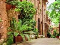 Uliczka toskańskiego miasteczka (Włochy)