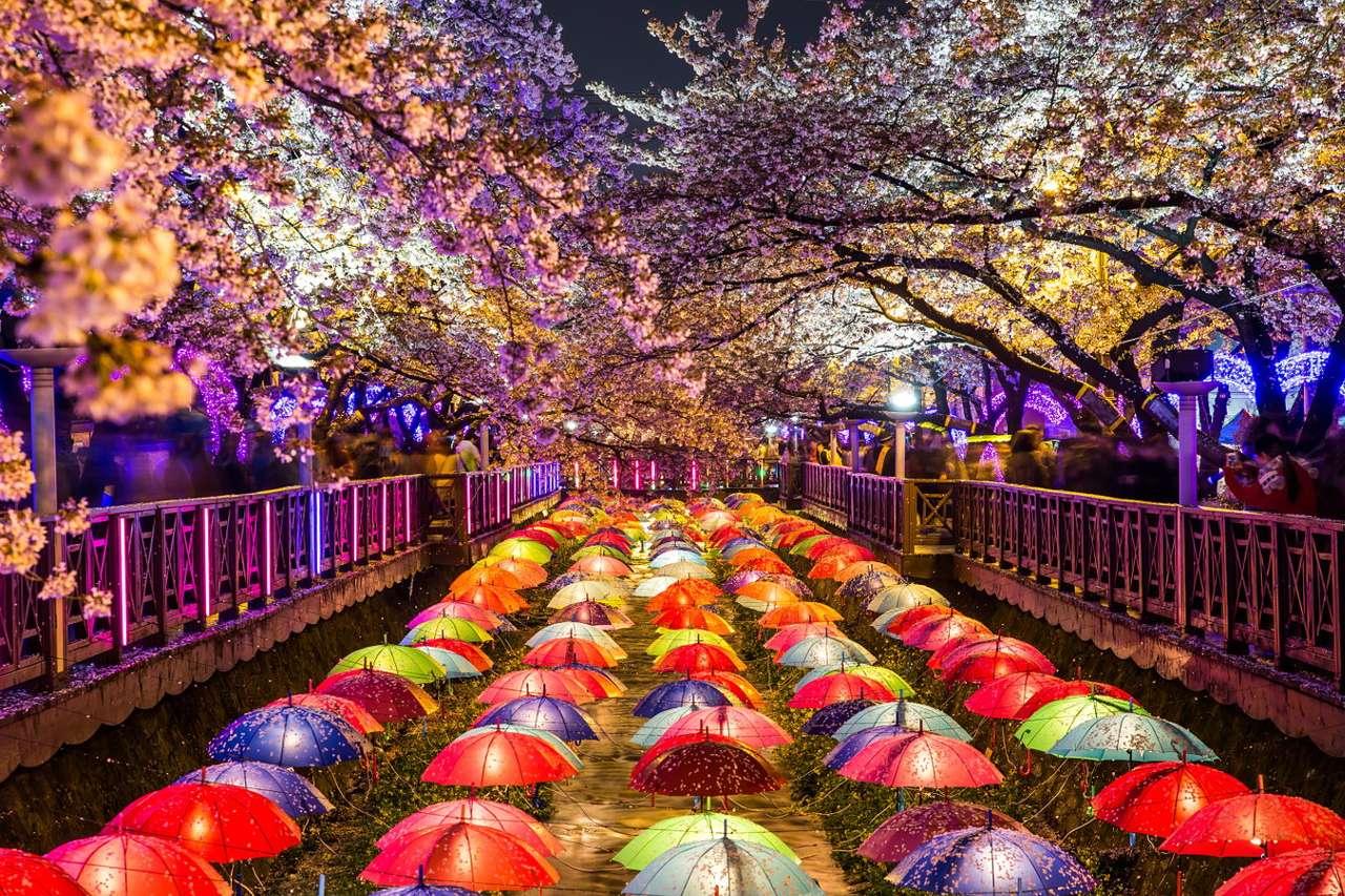 Kwitnące wiśnie w Jinhae (Korea Południowa) - Jinhae to niewielkie miasto portowe w Korei Południowej znane z odbywającego się tam od 1952 roku Festiwalu Kwitnących Wiśni. Wczesną wiosną do miasta przyjeżdżają tysiące turystów z całe (22×15)