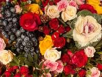 Różne odmiany róż