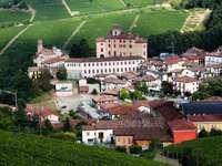 Miejscowość Barolo otoczona winnicami (Włochy)