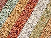 Kompozycja z suszonych nasion