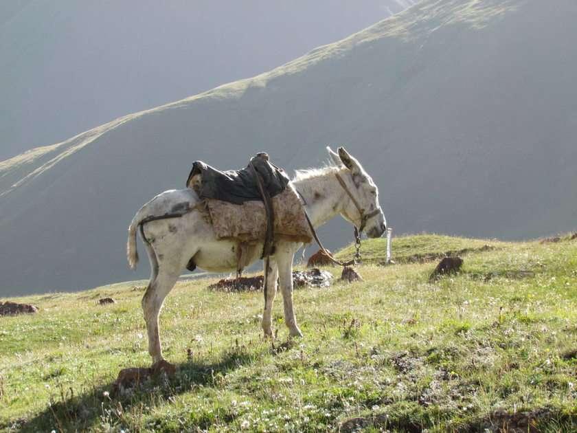 góry Kirgistanu puzzle ze zdjęcia