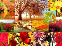 Collage jesienny