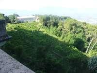 Włoski zielony zakątek