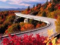 Route d'automne4
