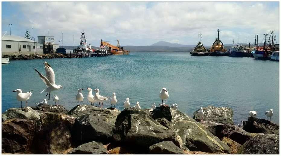 Port w Eden, NSW