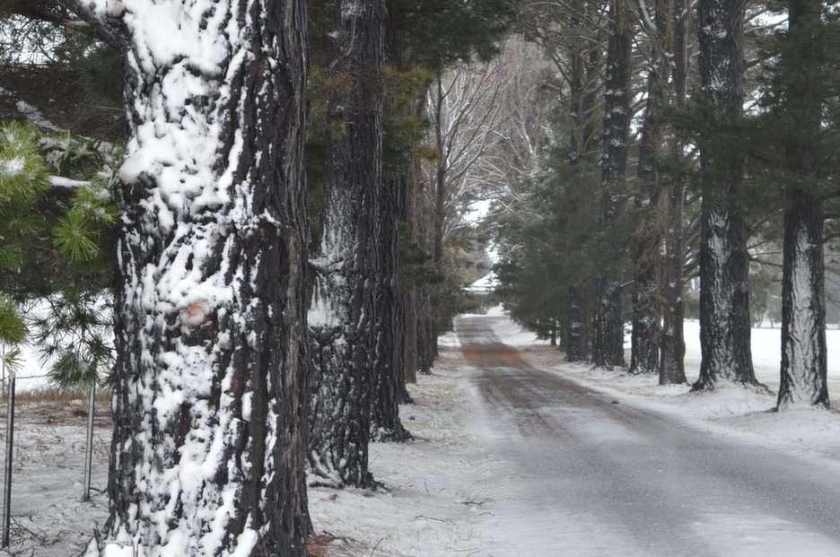 Śnieżny dzień puzzle ze zdjęcia