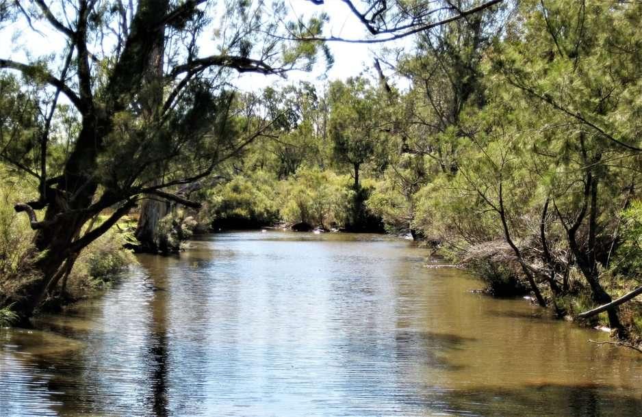 Ironpot Creek