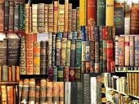 Londyn-biblioteka