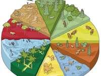 Biomy i ekosystemy