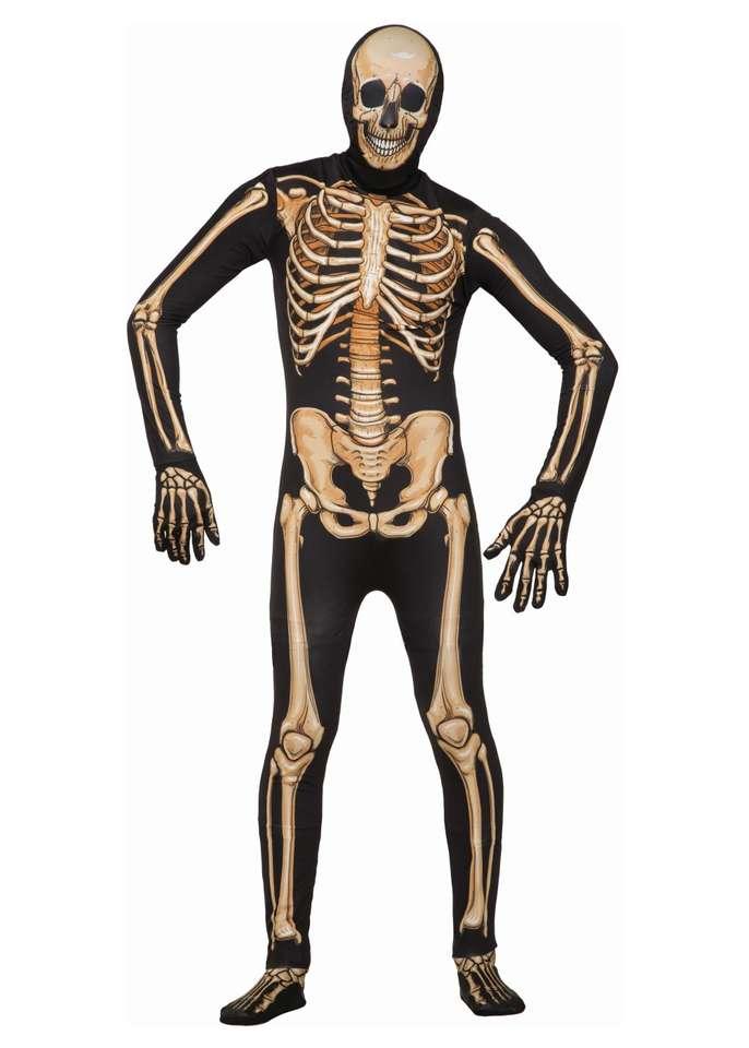 Szkielet człowieka puzzle ze zdjęcia