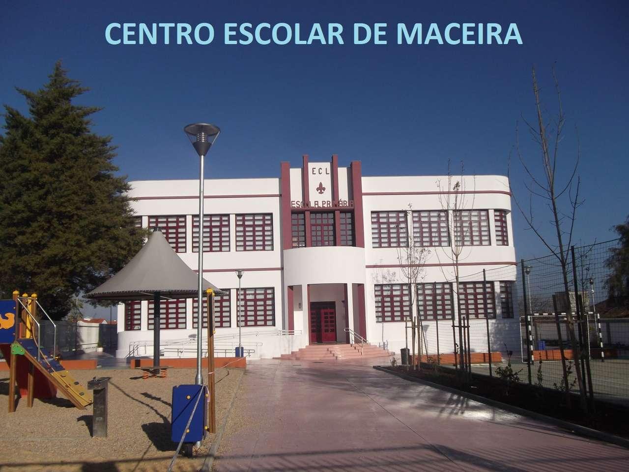 Centrum szkolne