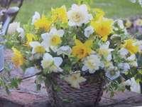 wiosna w koszyku