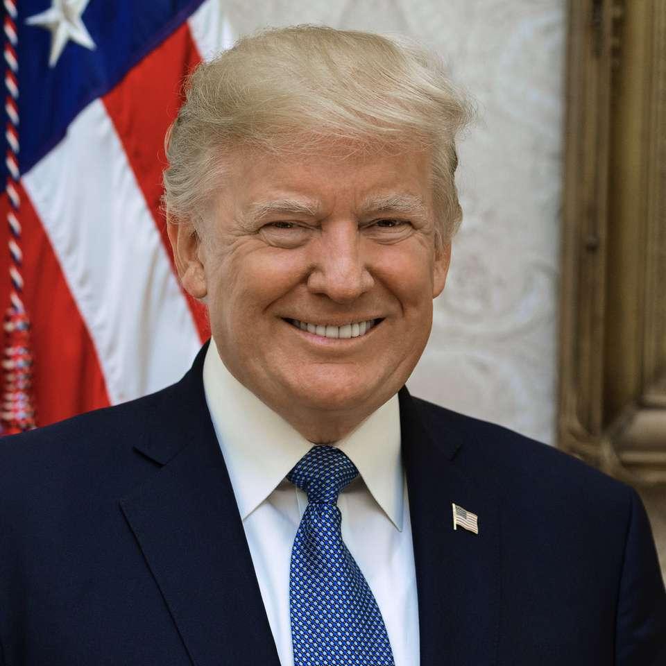 Trump dfdfds puzzle ze zdjęcia