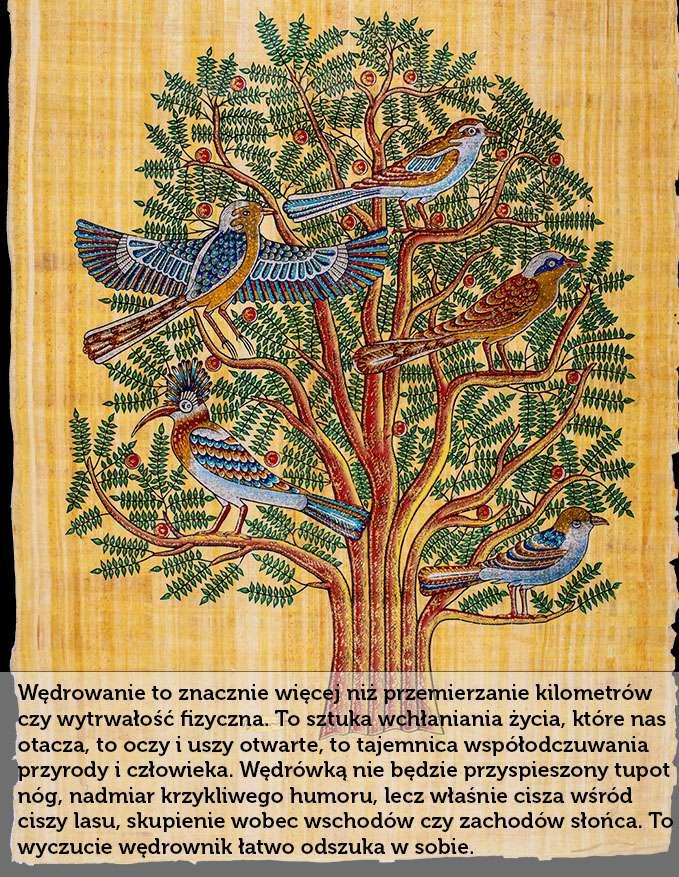Złote drzewo życia