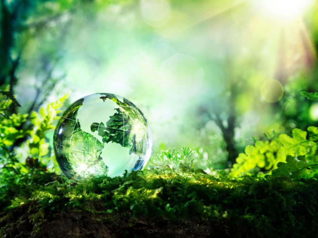 nauka o środowisku