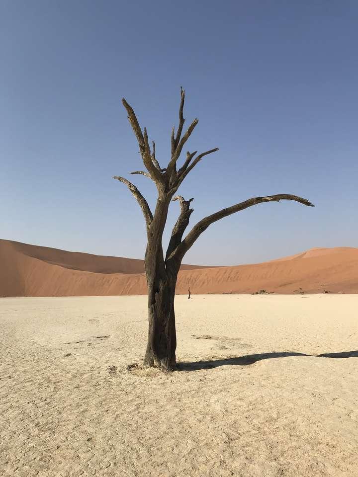 Puzzle Namibia dla szaty