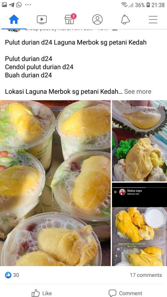 Pulian Durian.