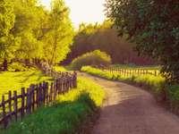 Droga z płotkirm