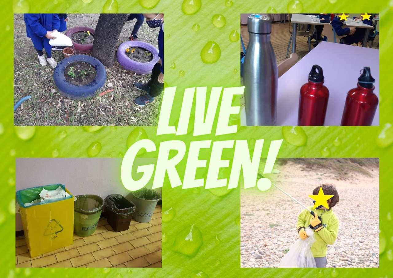 Żyj zielony!