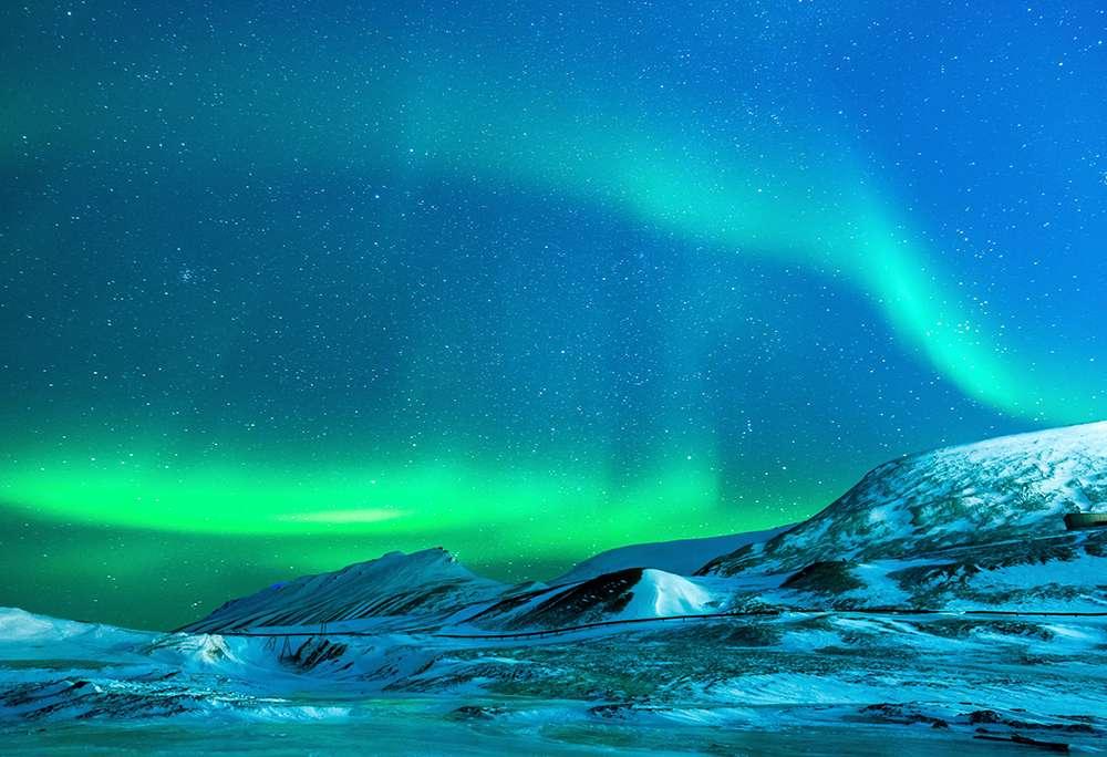 Arktyczny przez eBay.