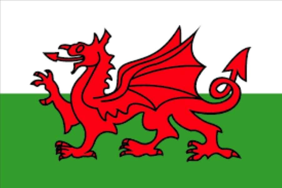 Flaga walijska