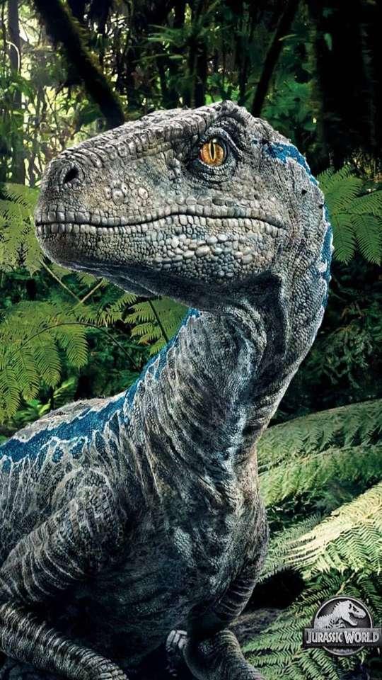 Velociraptor Blue.