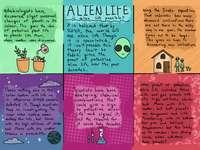 Obcy życie - Choiceboard