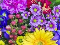 Piękne kwiaty sprężynowe. puzzle