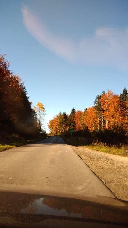 Droga w Bieszczadach puzzle ze zdjęcia