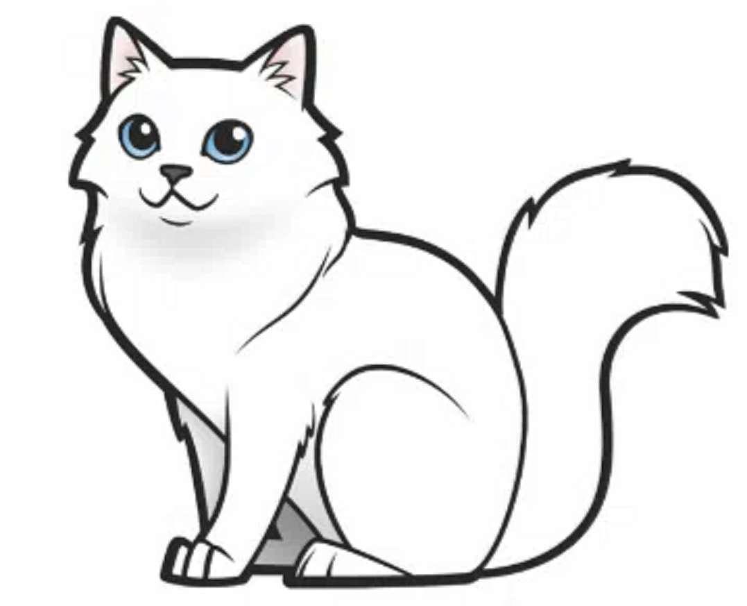 Słodki kociak