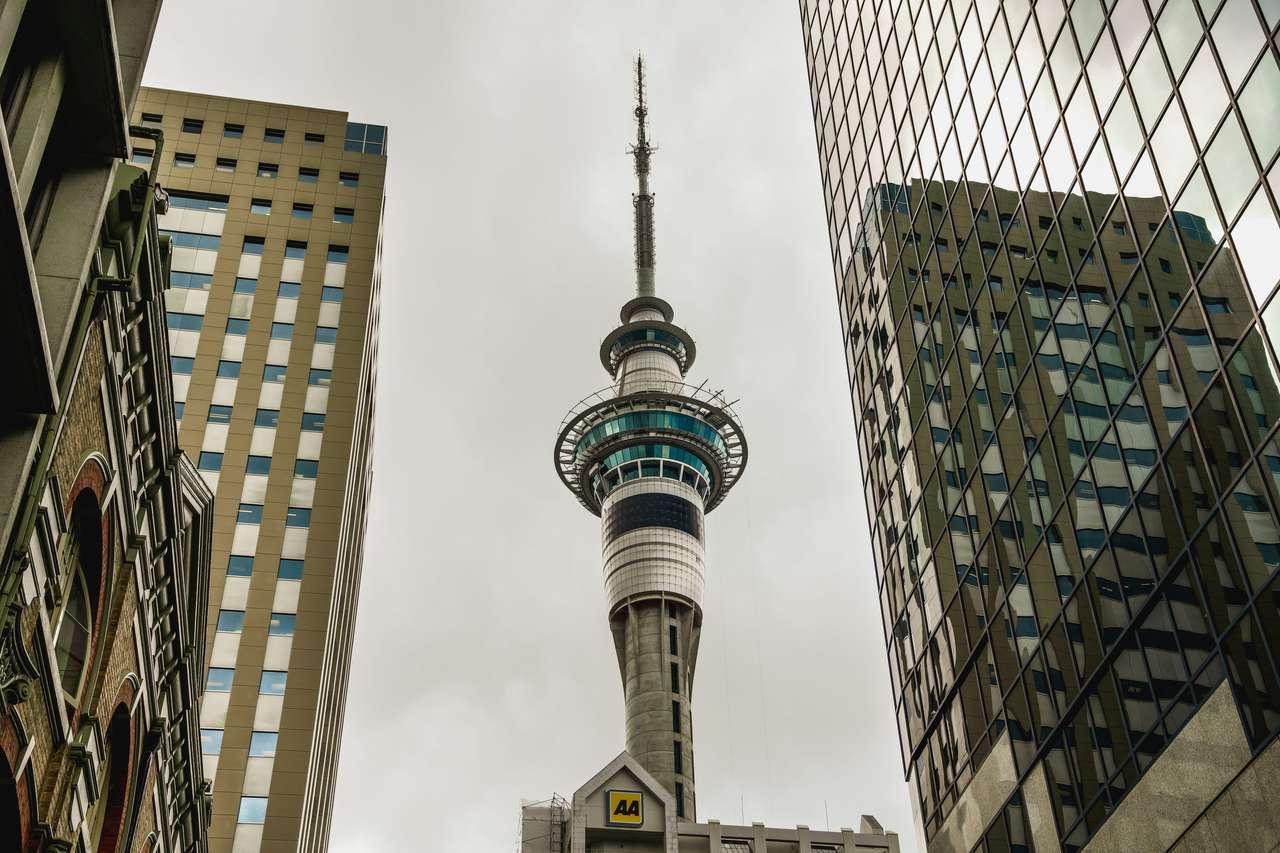 Sky Tower, Auckland, Nowa Zelandia puzzle ze zdjęcia