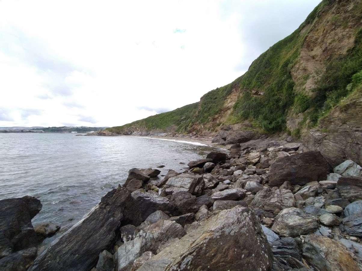 Morze plażowe.