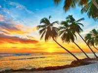 Karaibska wyspa Barbados